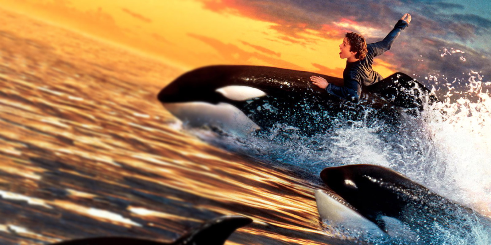 BANNER FREE WILLY 02